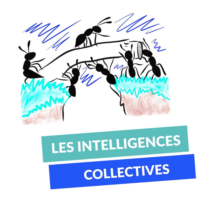 Les intelligences collectives