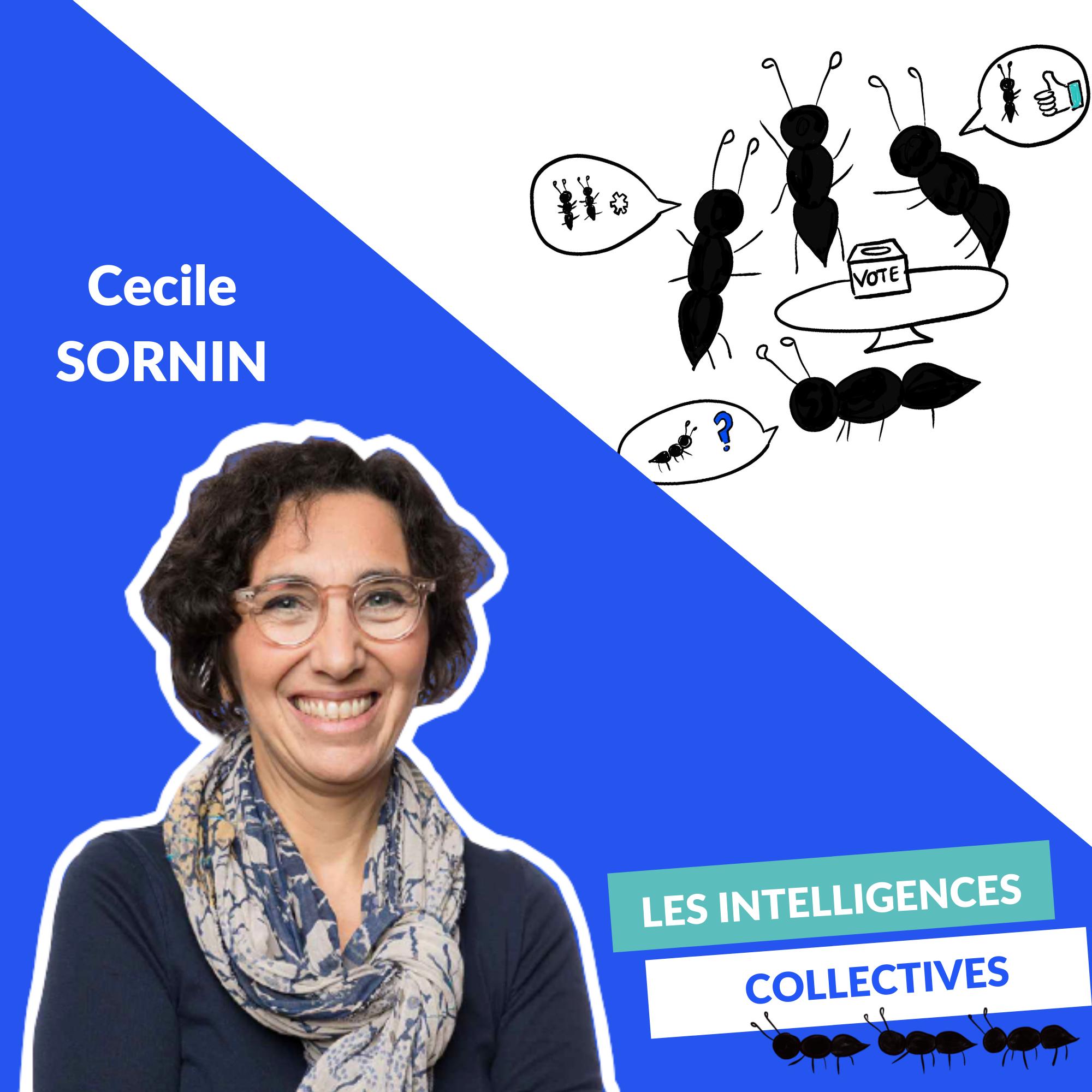 Cecile Sornin - Démocratie participative